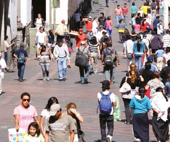 Nueva publicación de MISEAL y FLACSO-Chile: Construyendo un sistema de indicadores interseccionales Procesos de armonización en instituciones de educación superior de América Latina